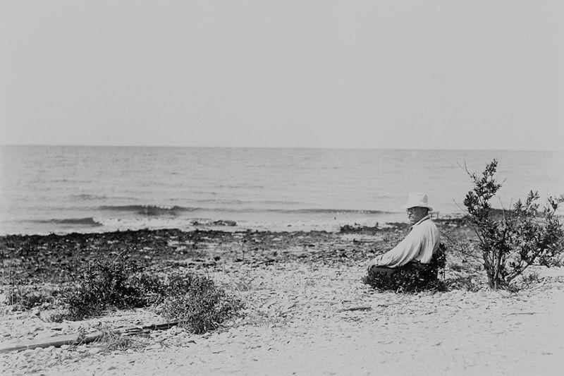 O 26º presidente dos Estados Unidos, Theodore Roosevelt (1901-1909), em 1915, já aposentado, no Refúgio Naclonal de Vida Silvestre Breton, criado em 1904, nas Ilhas Chandeleur, um desabitado arquipélago que serve de pouso para aves migratórias no Golfo do México a cerca de 80 km da costa da Louisiana. Foto: U.S. Fish and Wildlife Service/Library of Congress.